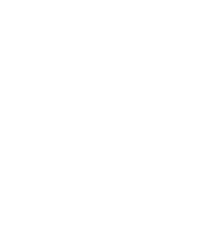Gift Options Logo
